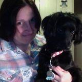 Pet Sitter, Kennel in Salem