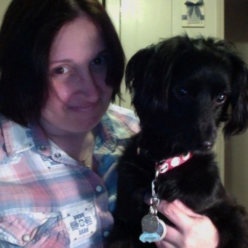 Pet Care Provider Debbie J's Profile Picture