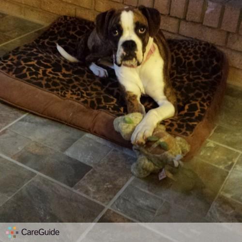 Pet Care Provider Dona C's Profile Picture