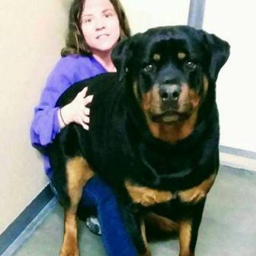 Pet Care Job Mindy Beeler Gallery Image 1
