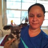 Pet Sitter in Jacksonville Beach