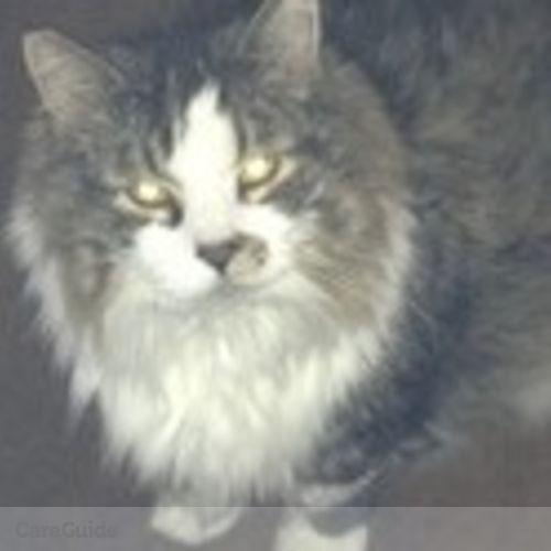 House Sitter Provider Michelle Kring-Mortazavi's Profile Picture