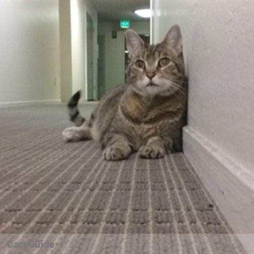 Pet Care Job Christine Lamphear's Profile Picture