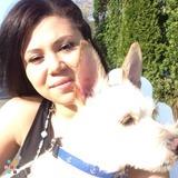 Dog Walker, Pet Sitter in Brewster