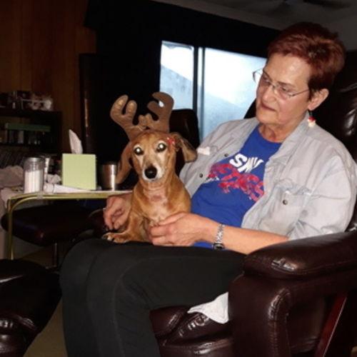 Pet Care Provider Yvonne H's Profile Picture