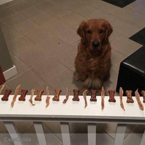 Pet Care Provider Kris Li's Profile Picture