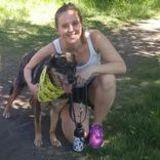 Friendly, active pet sitter experienced with large dog breeds eager to care for your pet!