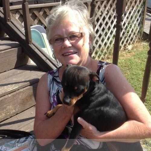 Pet Care Provider Dorothy S's Profile Picture