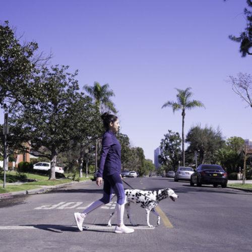 Pet Care Provider Elizabeth A Gallery Image 1