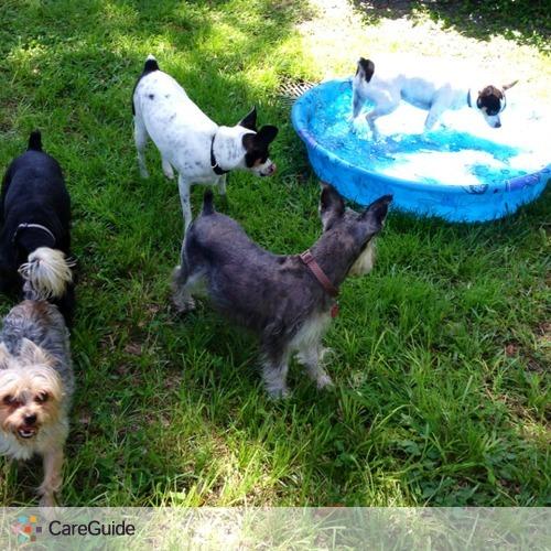 Pet Care Provider Sharon Hemmerich's Profile Picture