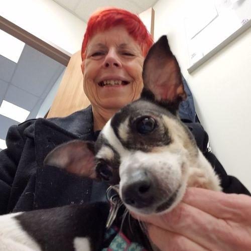 Pet Care Provider Patrice Batyski's Profile Picture