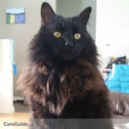 Pet Care Provider Susan B's Profile Picture