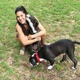 Eustis Pet Sitter Seeking Job Opportunities