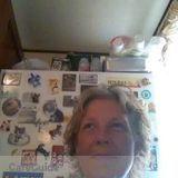 Housekeeper, House Sitter in Daytona Beach