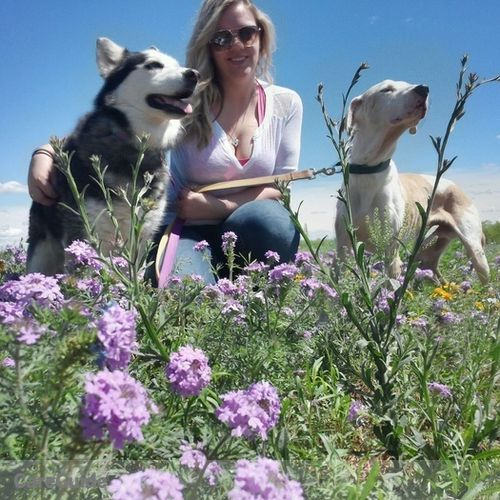 Pet Care Provider Stephanie Foust's Profile Picture