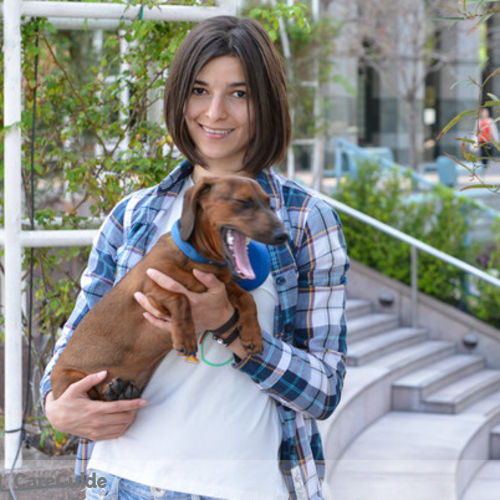 Pet Care Provider Daria Kondratenko's Profile Picture
