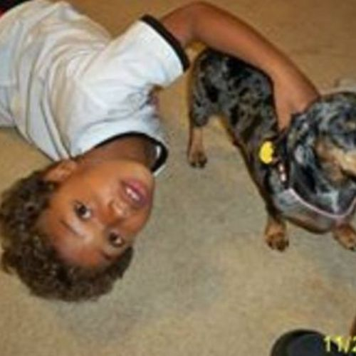 Pet Care Provider Kristi S Gallery Image 3