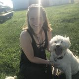 Qualified, Dependable & Loving Pet Sitter - Available Immediately.