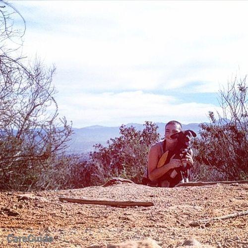 Pet Care Provider Rachel Hamman's Profile Picture