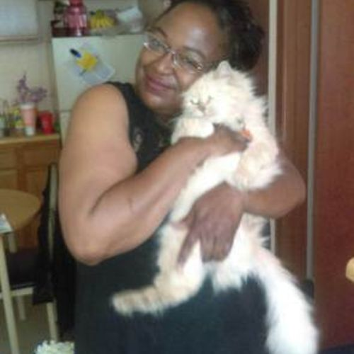 San Antonio In Home Caregiver Searching for Work
