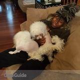 Dog Walker, Pet Sitter in Baltimore