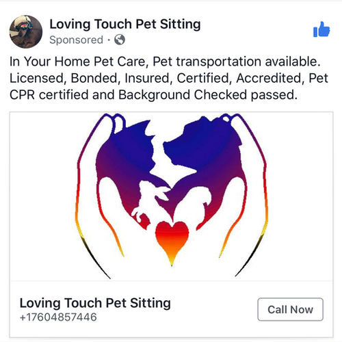 Pet Care Provider Debra C's Profile Picture