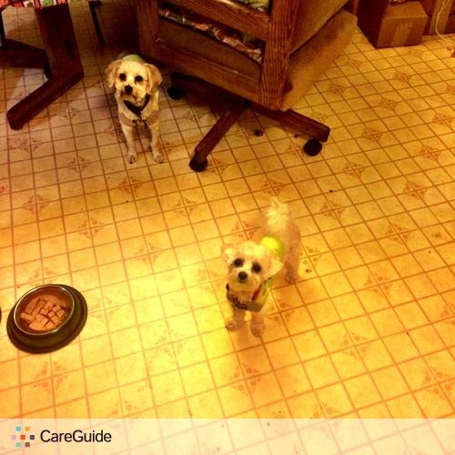 Pet Care Provider Jacqueline Patek's Profile Picture