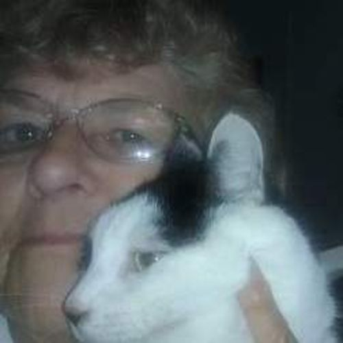 House Sitter Provider Linda Grelles's Profile Picture