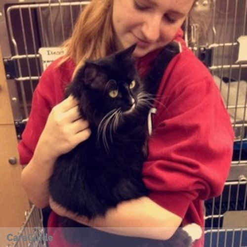 Pet Care Provider Kaitlyn Kennedy's Profile Picture