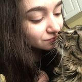 Qualified Pet Sitter in Taunton, Massachusetts. I have many years of expirence with pet care, and will treat as if my own.