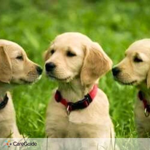 Pet Care Provider Dan Adkins's Profile Picture