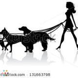 The Pet Nanny