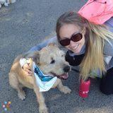Dog Walker, Pet Sitter in Burlingame