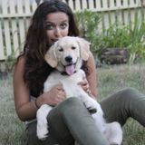 Long time student dog owner, looking to provide care for your furry friend!
