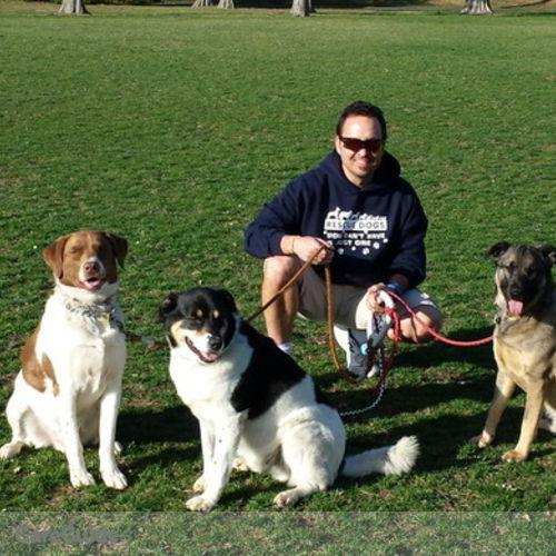 Pet Care Provider Drew T's Profile Picture