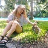 Available: Hardworking Pet Sitter in Key West, Florida. I love all animals, espically cats!