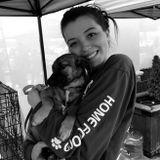 Dog Walker/ Pet Sitter! Lots of experience