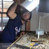 Handyman in Winooski