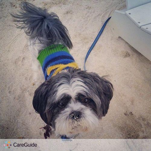 Pet Care Job Samantha Simpson's Profile Picture