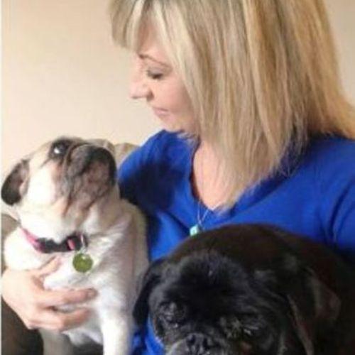 Professional Pet Sitter/Dog Walker in Bloomington/Normal