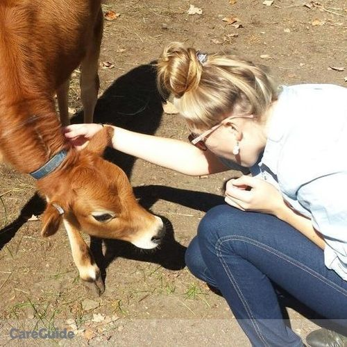 Pet Care Provider Meghan R's Profile Picture