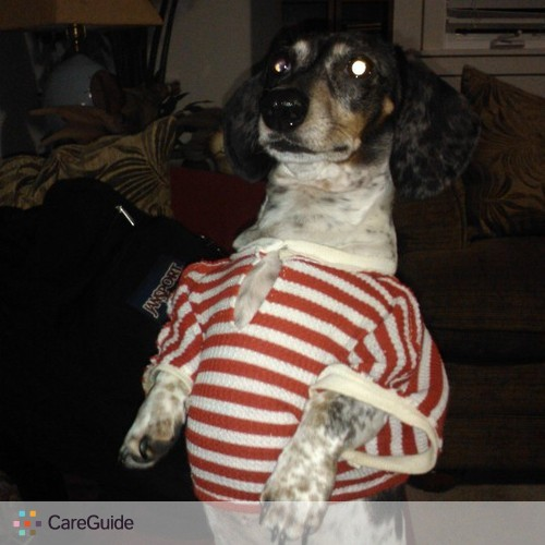 Pet Care Provider Ella Fisher's Profile Picture