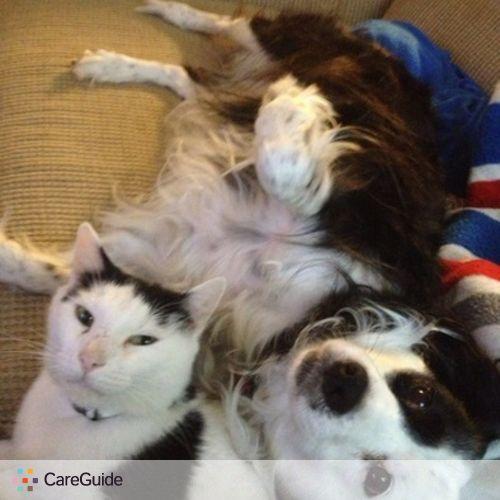 Pet Care Provider Tasha W's Profile Picture