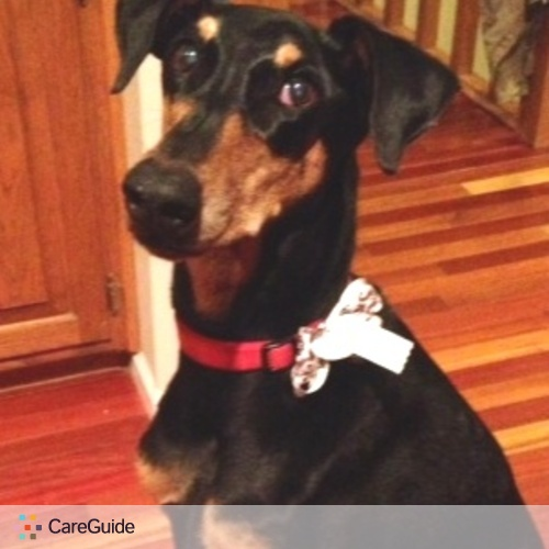 Pet Care Job Marilyn Mecham's Profile Picture