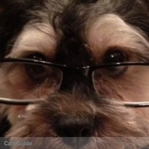 House Sitter Provider Barbara Allen's Profile Picture