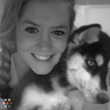 Dog Walker, Pet Sitter in Nappanee