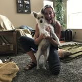 Searching for a Dog Walker/Sitter Opportunity in Savage