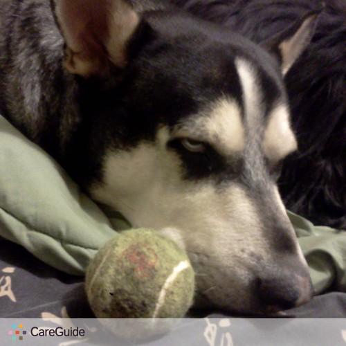 Pet Care Provider Frankie Alvarado's Profile Picture