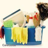 Housekeeper, House Sitter in Joliet