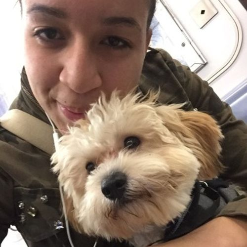 Pet Care Provider Arelis M's Profile Picture